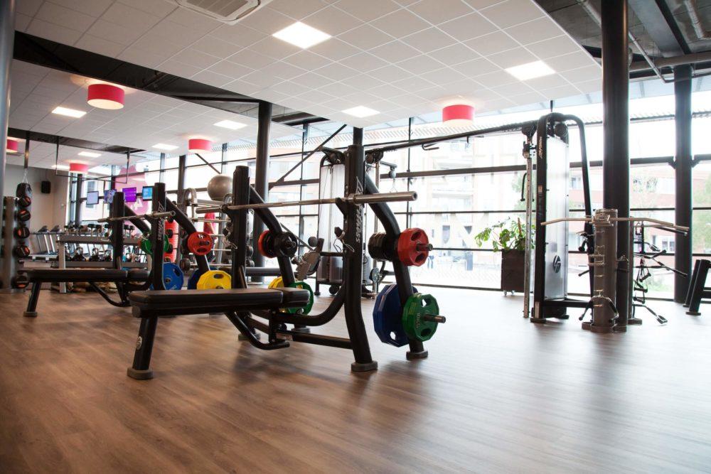 Sportschool Assen ProFit Gym Gewichten